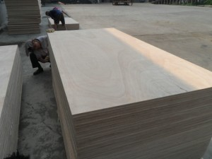 NICE WOOD GRAIN OKOUME PLYWOOD ,BB/CC THROUGHOUT PLYWOOD