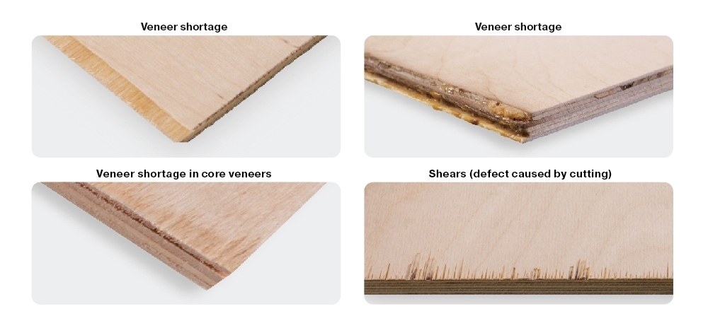 Edge defects caused by sanding, cutting (fringe), veneer shortage