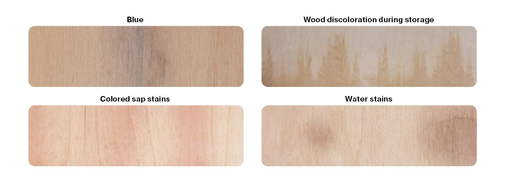 Mineral streaks, sap stains (blue, colored sap stains), wood discoloration during storage
