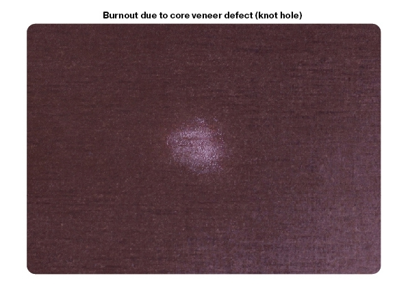 Core veneer defect traces: knot holes, other holes
