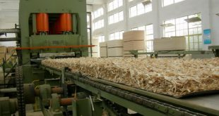 OSB PANEL Manufacturing process