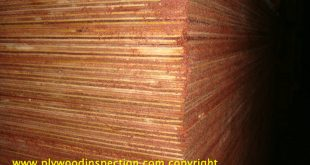 Make up poplar plywood and dress it up as red hardwood plywood.