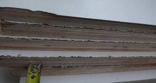 HPL plywood manufacturing defects